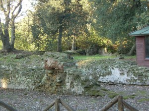 The remnants of the suggested Temple of Artemis/Diana